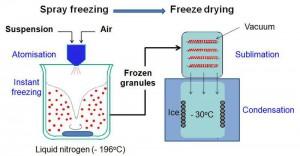 Freeze granulation illustration