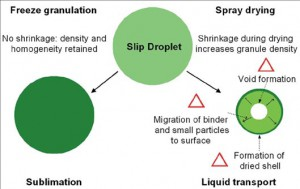Freeze granulation vs spray drying